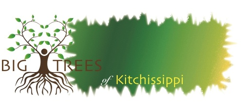 big-trees-banner-smaller
