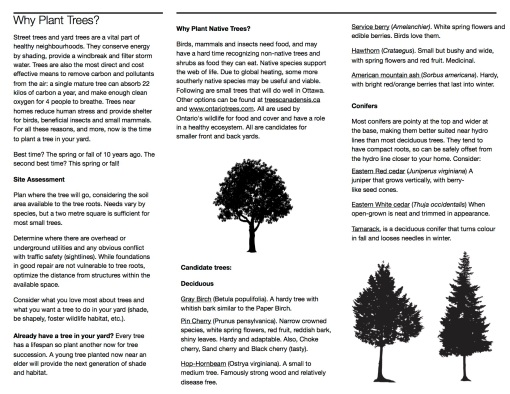 brochure-screenview